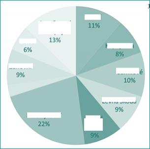 Pie chart segmentace